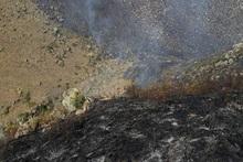 Пожарные-спасатели потушили пожары на территории общей площадью 42.5 га