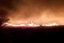 Այրվել է մոտ 5 հա բուսածածկույթ