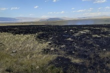 Пожарные-спасатели потушили пожары на территории общей площадью 7 га