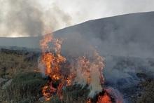 Пожарные-спасатели потушили пожары на территории общей площадью 6.5 га