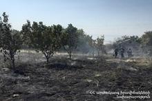 Пожар, вспыхнувший в селе Айнтап, потушен