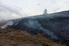 Firefighters extinguished fires broken out in the area of about 10.2 հa in total