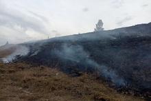 Пожарные-спасатели потушили пожары на территории общей площадью 10.2 га