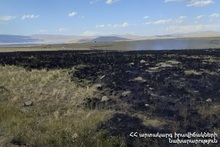 115 fires were registered in the grasslands of the provinces and Yerevan of RA during the week