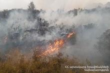 Fire in Elpin village was extinguished