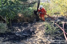 Firefighters extinguished fires broken out in the area of about 44.2 հa in total