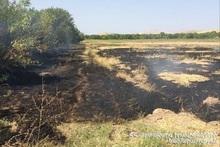 За неделю было зарегистрировано 72 пожара на травяных участках Еревана и регионов РА