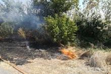 Пожарные-спасатели потушили пожары на территории общей площадью 1․87 га