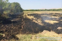 72 fires were registered in the grasslands of Provinces and Yerevan of RA during the week
