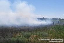 Пожарные-спасатели потушили пожары на территории общей площадью 8.6 га
