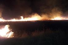 Այրվել է մոտ 65 հա խոտածածկույթ