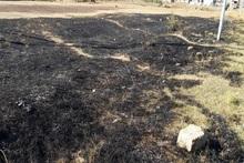 Пожарные-спасатели потушили пожары на территории общей площадью 8 га