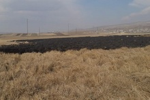 Firefighters extinguished fires broken out in the area of about 33.6 ha in total