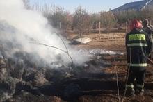Արագածոտն գյուղում այրվել է մոտ 450 հակ անասնակեր