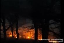 Пожар в ГНКО «Дилижанский национальный парк»