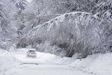 Из-за метели автодорога Ереван-Мегри труднопроходима: МЧС призывает ехать только в случае крайней необходимости