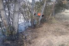 Пожарные-спасатели потушили пожары на территории общей площадью 2.5 га