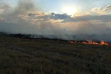 Пожарные-спасатели потушили пожары на территории общей площадью 2.7 га