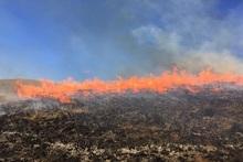 Пожарные-спасатели потушили пожары на территории общей площадью 5.1 га