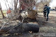 Спасатели убрали деревo с проезжей части дороги