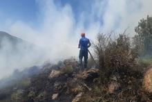 Пожарные-спасатели потушили пожары на территории общей площадью 15․1 га
