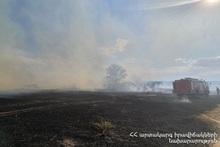 На улице Тичина сгорели около 12 га травяного покрова и кустарники