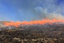 Пожарные-спасатели потушили пожары на территории общей площадью 8,9 га