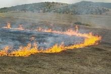 Пожарные-спасатели потушили пожары на территории общей площадью 41.4 га