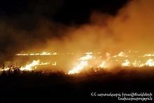 Сгорело около 50 га травяного покрова