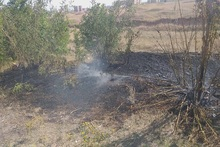 Firefighters extinguished fires broken out in the area of about 220․7 ha in total