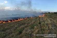 Пожарные-спасатели потушили пожары на территории общей площадью 90.1 га
