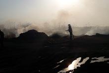 Пожарные-спасатели потушили пожары на территории общей площадью 41.7 га