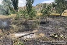 Пожарные-спасатели потушили пожары на территории общей площадью 29 га