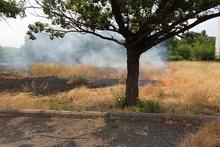 Пожарные-спасатели потушили пожары на территории общей площадью 45․8 га
