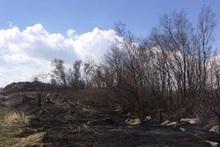 Пожарные-спасатели потушили пожары на территории общей площадью 72.4 га