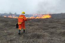 Пожарные-спасатели потушили пожары на территории общей площадью 10.9 га